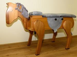 Chiropraktor-Haus-Hamburg-Behandlungspferd