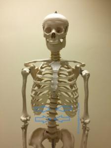 Chiropraktor-Haus, Chiropraktik, Spinalkanalstenose, Rückenschmerzen, Hüftschmerzen, Knieschmerzen, Kopfschmerzen